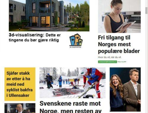 Bruk av Google og Facebook i markedsføring av boliger